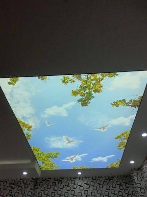 transparan-gergi-tavan-modelleri-1 (152)