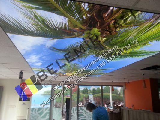 Ghana Stretch Ceiling, Lighting, Decoration, Barrisol, Home Decoration, Hotel Decoration Lightingi Pool Decoration, Bar, Clup, Disco, Decoration