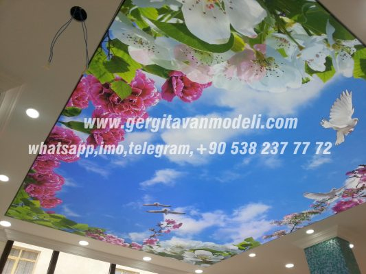 stretch ceiling, sky, flower, bird, models home decor, bedroom stretcher ceiling models, kitchen decor hotel lobby decoration gostivar macedonia.
