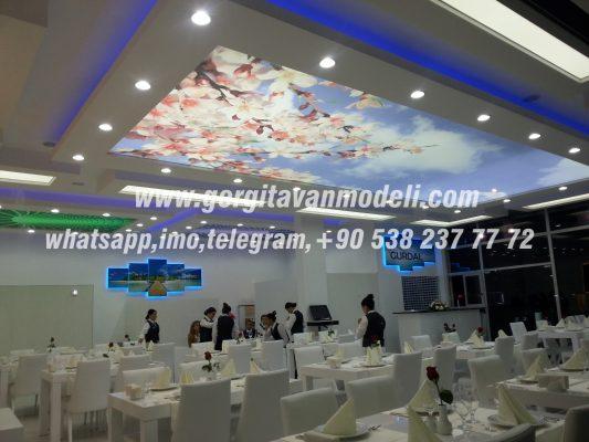 cafe design, cafe decoration, cafe lighting, cafe images, modern cafe, stretch ceiling, stretch ceiling lighting, qatar