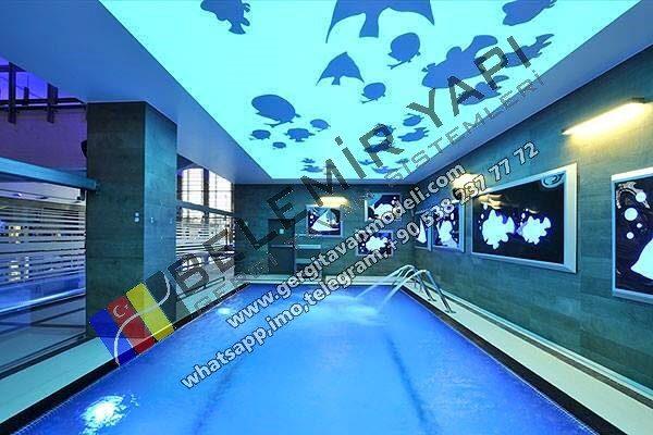 havuz tavan modelleri, havuz görselleri, yeni havuz modelleri, modern havuz görselleri, 3d havuz dekorasyonu, havuz aydınlatma, yüzme havuzları