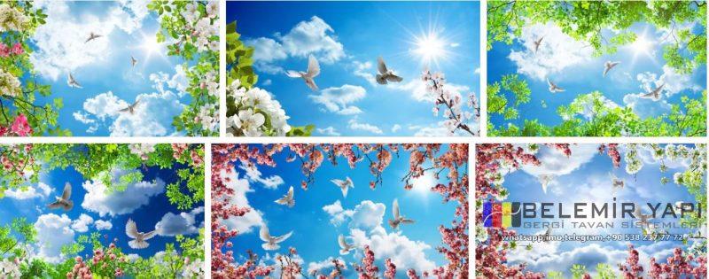 3d gergitavan, ğökyüzü,çiçek, bulut, kuş, yesşilyaprak, ilkbahar, sonbahar, kış, gökyüzü manzaralar