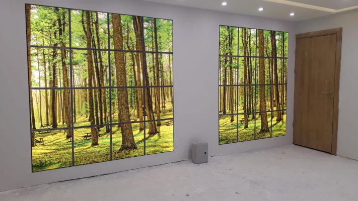 orman, ağaç, manzara, gergi tavan modelleri